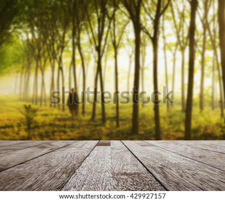 Wooden table top on  blurred para rubber tree garden in morning light, Can be use for display or montage you product