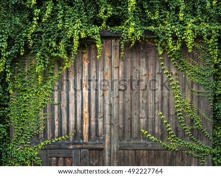 Wooden texture background with leaves.
