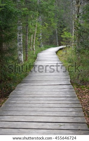 Wooden tiled road in forest