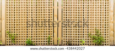 Wooden trellis on fencing in garden