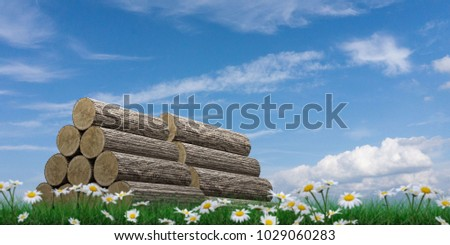 wooden trunk sections on green grass