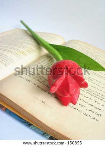 Wooden Tulip On Book