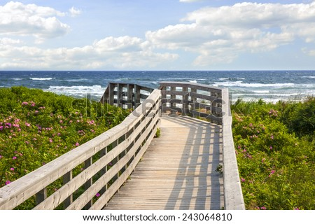 Wooden walkway leading to Atlantic ocean beach with wild rose flowers in Prince Edward Island, Canada. - stock photo