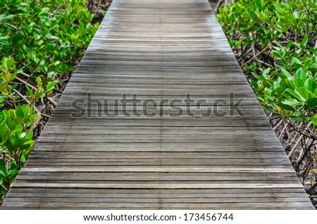Wooden walkway straight through the tropical forest - stock photo