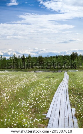 Wooden walkway to the swampy river bank - stock photo