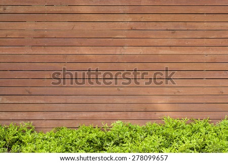 Wooden wall, background framed with green bushes and grass