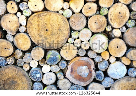Wooden wall of timber - stock photo