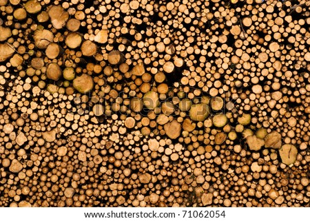 Wooden wall of timber outdoors - stock photo