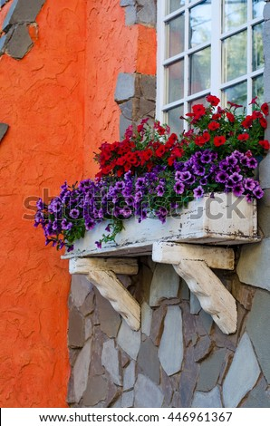 Wooden window sill with petunia flowers in a white box