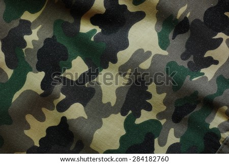 Woodland Camouflage Texture (Valid) - stock photo