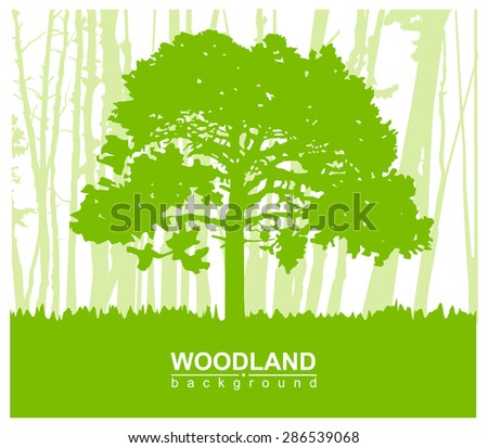 Woodland eco banner. Can be used as poster, badge, wallpaper, backdrop, background, icon, sign.