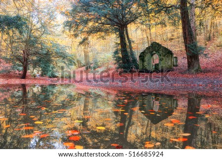 Woodland pool in Autumn. Reflection in the water of an old ruin of a folly in Rectory Wood, Shropshire, UK.