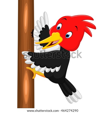 Smiling Woodpecker Stock Images, Royalty-Free Images ...