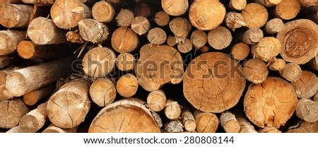 Woodpile From Big Pine And Fir Tree Logs For Forestry Industry. Background And Texture With Space For Text Or Image - stock photo