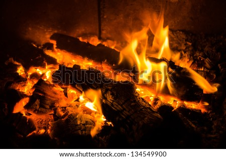 Woods burning in fireplace - stock photo
