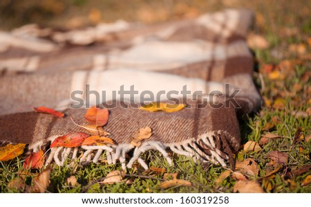 Wool plaid with autumn leaves close up  - stock photo