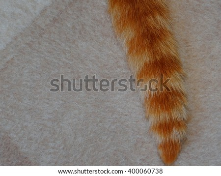 woolen cloth with a red tail  - stock photo