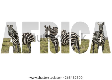 Word AFRICA over wild animals. - stock photo