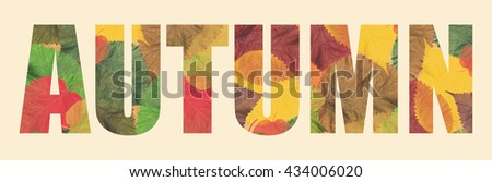 Word AUTUMN made of a autumn colorful leaves. Tone colors image - stock photo