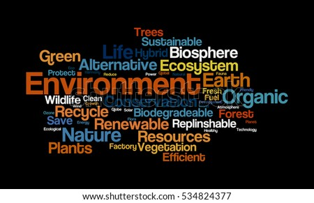 Word cloud illustrating the significance of Environment