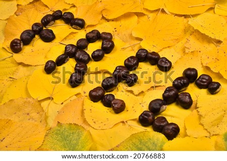 Word from chestnut on leaf - stock photo
