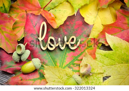 Word LOVE on the background of the autumn leaves and acorns