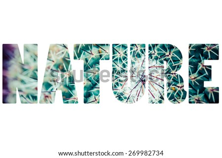 Word NATURE over cactus plant. - stock photo