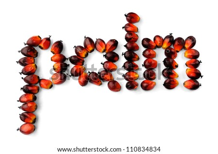 Word palm made from fresh palm oil seeds isolated on white background, selective focus. - stock photo