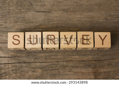 word survey on wooden cubes - stock photo