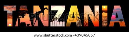 Sky forex tanzania