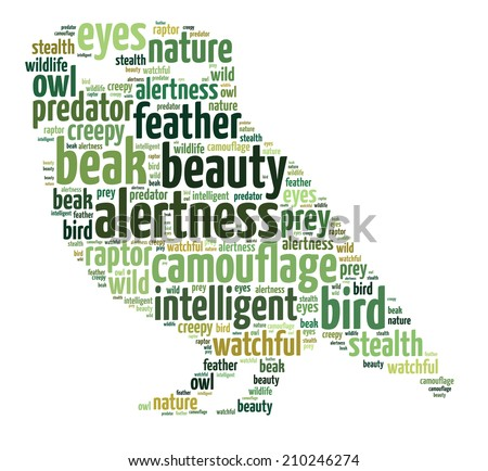 Words illustration of an owl over white background - stock photo