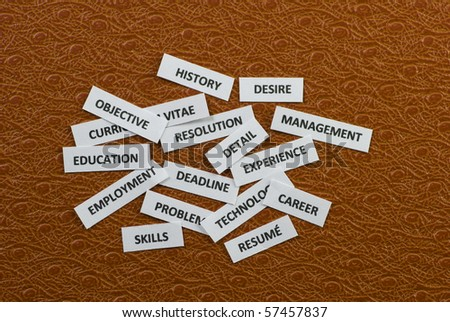 Words on paper scraps about jobs and job hunting - stock photo