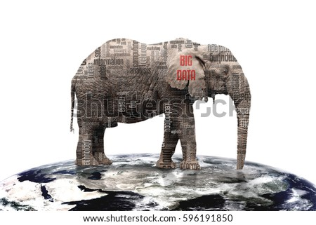 words related with big data analysis on elephant which stand on earth, on white backgrounds
