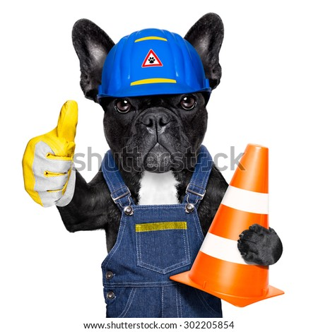 worker  dog with helmet  with thumb up  ,work in progress, traffic cone in arm , isolated on white background - stock photo