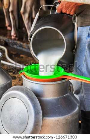 Worker pouring milk into a container - stock photo