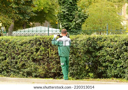 Worker trimming hedge in the park - stock photo
