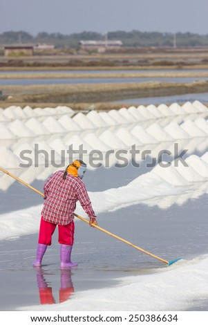 Workers are working at a salt farm in Thailand. - stock photo