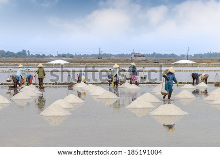 Workers collect salt in salt farm - stock photo
