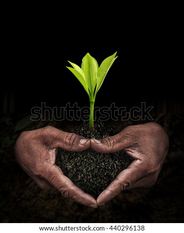 workers hand and seedlings in the dark
