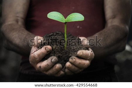 workers hands with a handful of peasant land - stock photo