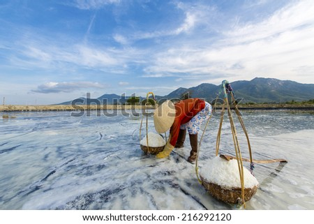 Workers of a salt processing company is gathering / collecting salt at Hon Khoi Salt Field, Khanh Hoa, Vietnam - stock photo