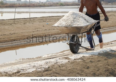 Workers unload salt in the salt farm. Samut Songkhram, This is one of the major industries in the country.