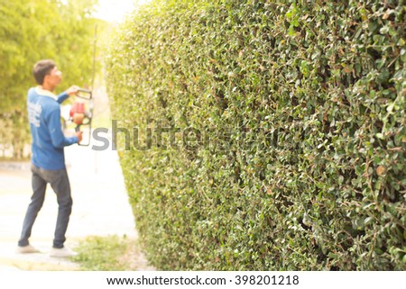 Workers were using mower for Gardening.(selective focus) - stock photo