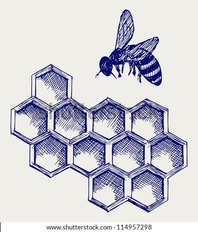 Working bee on honeycells. Doodle style. Raster version - stock photo