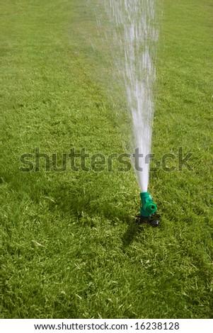 working garden sprayer on green turf - stock photo