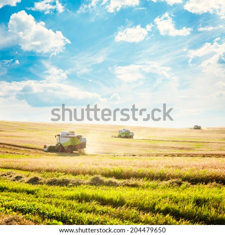 Working Harvesting Combines in the Field of Wheat. Agriculture Concept. Copy Space. Toned Photo. - stock photo