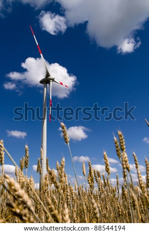 Working wind turbine against the blue sky, and wheat - stock photo