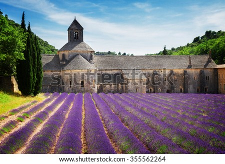 world famous Abbey Senanque and blooming  Lavender field, France, toned - stock photo