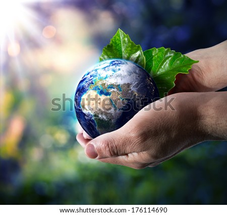 world in hand - environment concept  - stock photo