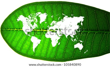 world map in a leaf - stock photo